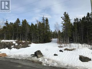 Photo 8: 0 New World Island Forestry Access Road in Summerford: Vacant Land for sale : MLS®# 1229207