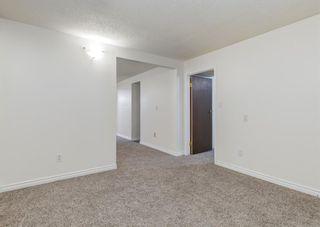 Photo 21: 387 Maitland Crescent NE in Calgary: Marlborough Park Detached for sale : MLS®# A1126572