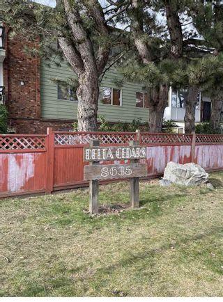 """Photo 2: 327A 8635 120 Street in Delta: Annieville Condo for sale in """"Delta Cedars"""" (N. Delta)  : MLS®# R2539226"""