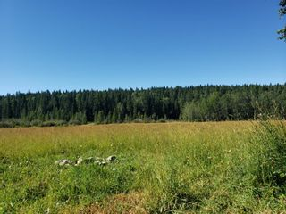 Photo 4: IN ROCKY VIEW COUNTY in Rural Rocky View County: Rural Rocky View MD Land for sale : MLS®# A1065924