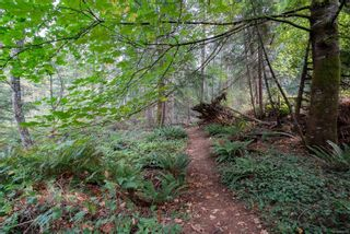 Photo 22: 5918 Oliver Rd in : Na Uplands House for sale (Nanaimo)  : MLS®# 857307