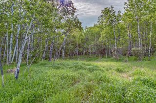 Main Photo: 60 Stonewood Dale in Rural Rocky View County: Rural Rocky View MD Land for sale : MLS®# A1069036