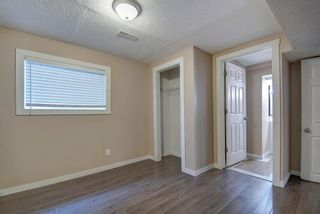 Photo 19: 180 Maitland Place NE in Calgary: Marlborough Park Detached for sale : MLS®# A1048392