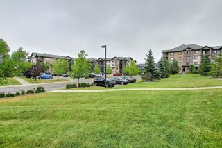 Photo 18: 3217 60 Panatella Street NW in Calgary: Panorama Hills Apartment for sale : MLS®# A1131614