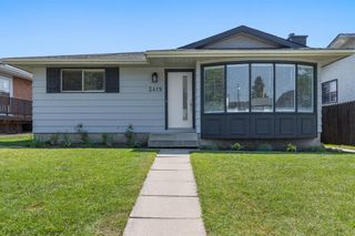 Main Photo: 3419 Dover Ridge Drive in Calgary: Dover Detached for sale : MLS®# A1129560