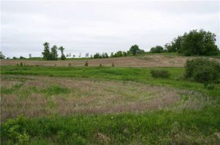 Photo 13: Lot 19 Con 2 in Amaranth: Rural Amaranth Property for sale : MLS®# X4152768