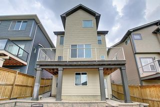 Photo 40: 12 Kincora Street NW in Calgary: Kincora Detached for sale : MLS®# A1071935