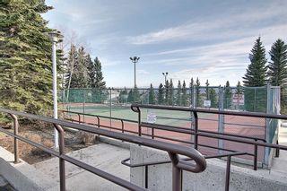Photo 6: 318 Hawkside Mews NW in Calgary: Hawkwood Detached for sale : MLS®# A1082568