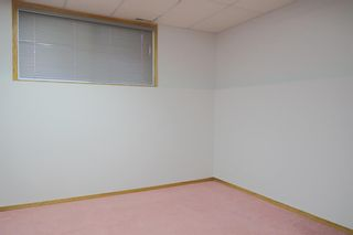 Photo 32: 170 Tipping Close SE: Airdrie Detached for sale : MLS®# A1121179