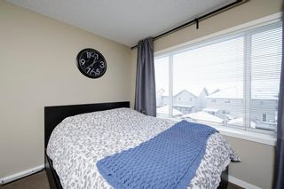 Photo 29: 19 COPPERPOND Close SE in Calgary: Copperfield Row/Townhouse for sale : MLS®# A1049083