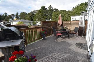 Photo 19: 1036 Lodge Ave in VICTORIA: SE Maplewood House for sale (Saanich East)  : MLS®# 816810