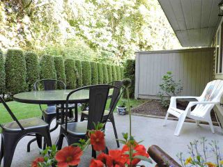 Photo 29: 24 7640 BLOTT STREET in Mission: Mission BC Townhouse for sale : MLS®# R2469418