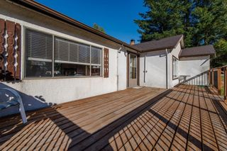 Photo 6: 33967 MCCRIMMON Drive in Abbotsford: Abbotsford East House for sale : MLS®# R2609247