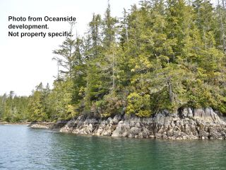 Photo 7: SL 50 Hot Springs Oceanside in TOFINO: PA Tofino Land for sale (Port Alberni)  : MLS®# 831209