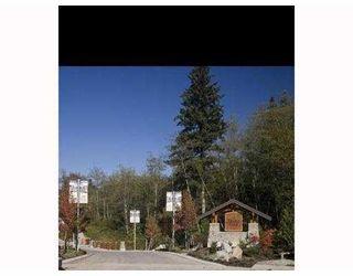 """Photo 10: 90 24185 106B Avenue in Maple Ridge: Albion 1/2 Duplex for sale in """"TRAILS EDGE"""" : MLS®# V872074"""