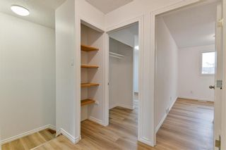 Photo 13: 153 Le Maire Rue in Winnipeg: St Norbert Residential for sale (1Q)  : MLS®# 202113605