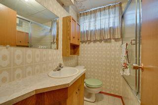 Photo 35: 7228 131A Avenue in Edmonton: Zone 02 House for sale : MLS®# E4252234