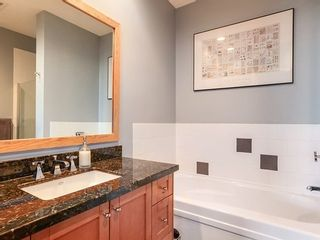 Photo 9: 310 250 SALTER Street in New Westminster: Queensborough Home for sale ()  : MLS®# V1046749