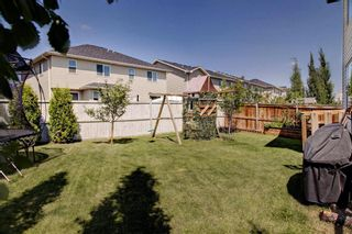 Photo 40: 40 BRIGHTONCREST Manor SE in Calgary: New Brighton Detached for sale : MLS®# A1016747