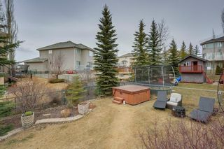 Photo 46: 70 ROYAL CREST Way NW in Calgary: Royal Oak Detached for sale : MLS®# C4237802