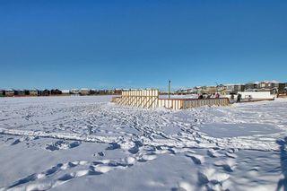 Photo 47: 111 Legacy Glen Terrace SE in Calgary: Legacy Detached for sale : MLS®# A1056518