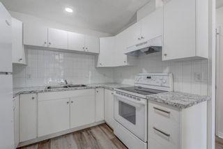 Photo 13: 4908 44 Avenue NE in Calgary: Whitehorn Semi Detached for sale : MLS®# A1129146