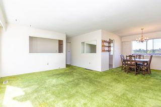 Photo 6: 1401 McKenzie Ave in : SE Cedar Hill House for sale (Saanich East)  : MLS®# 854162