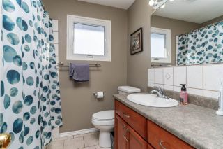 Photo 37: 6425 34 Street in Edmonton: Zone 53 House for sale : MLS®# E4229482