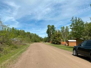 Photo 46: 306 CRYSTAL SPRINGS Close: Rural Wetaskiwin County House for sale : MLS®# E4247177