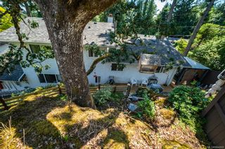 Photo 31: 600 Phelps Ave in Langford: La Thetis Heights House for sale : MLS®# 844068