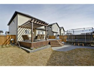Photo 29: 178 MORNINGSIDE Gardens SW: Airdrie House for sale : MLS®# C4003758
