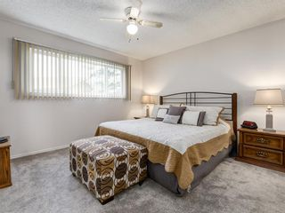 Photo 23: 44 MAITLAND Green NE in Calgary: Marlborough Park Detached for sale : MLS®# A1030134