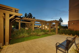 """Photo 32: 108 22577 ROYAL Crescent in Maple Ridge: East Central Condo for sale in """"THE CREST"""" : MLS®# R2625662"""