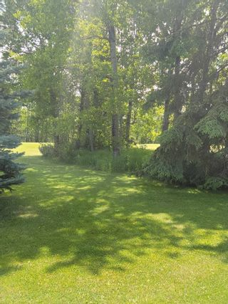 Photo 13: 49461 RGE RD 22: Rural Leduc County House for sale : MLS®# E4247442