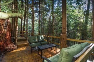 Photo 2: 71 DEEP DENE Road in West Vancouver: British Properties House for sale : MLS®# R2620861