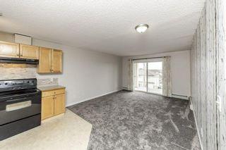 Photo 16: 329 16221 95 Street in Edmonton: Zone 28 Condo for sale : MLS®# E4250515