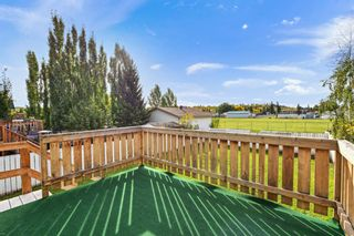 Photo 18: 4333 58 Street: Red Deer Detached for sale : MLS®# A1149215