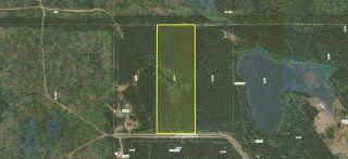 Photo 2: LOT 64 ROBERTSON Road: Cluculz Lake Land for sale (PG Rural West (Zone 77))  : MLS®# R2529779