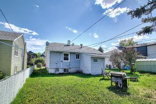 Photo 36: 244 18 Avenue NE in Calgary: Tuxedo Park Detached for sale : MLS®# A1117681