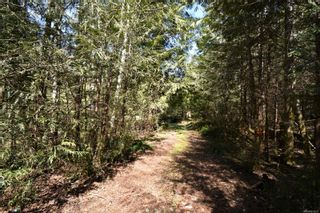Photo 9: 584 Sabre Rd in : NI Kelsey Bay/Sayward House for sale (North Island)  : MLS®# 873035