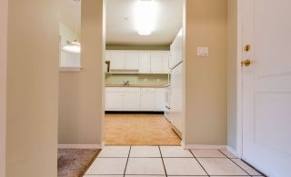 """Photo 4: 307 32075 GEORGE FERGUSON Way in Abbotsford: Central Abbotsford Condo for sale in """"ARBOUR COURT"""" : MLS®# R2564038"""