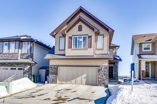 Main Photo: 231 Sherview Grove NW in Calgary: Sherwood Detached for sale : MLS®# A1073268