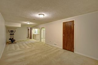 Photo 17: 3111 RAE Crescent SE in Calgary: Albert Park/Radisson Heights Detached for sale : MLS®# C4258934