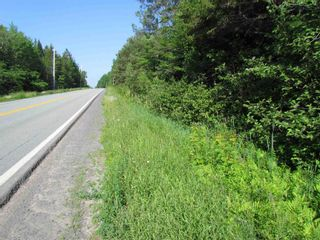 Photo 10: 236 Highway Highway in Kennetcook: 105-East Hants/Colchester West Vacant Land for sale (Halifax-Dartmouth)  : MLS®# 202116831