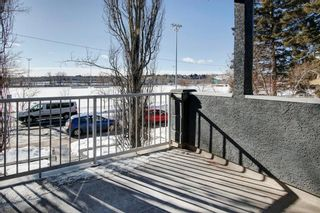 Photo 29: 2010 Broadview Road NW in Calgary: West Hillhurst Semi Detached for sale : MLS®# A1072577
