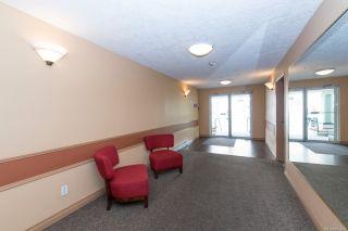 Photo 19: 210 689 Bay St in : Vi Downtown Condo for sale (Victoria)  : MLS®# 871309