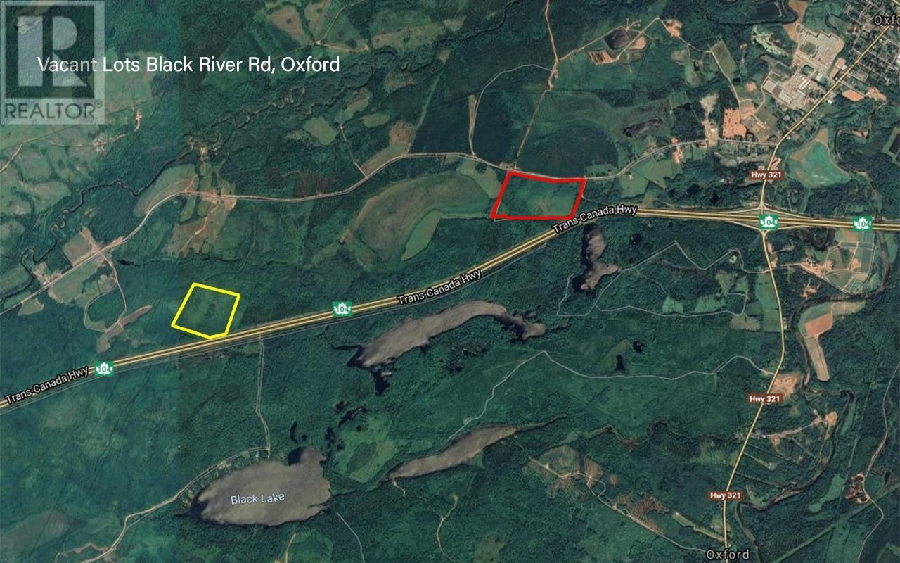 Main Photo: Vl Black River Road in Oxford: Vacant Land for sale : MLS®# 202110047