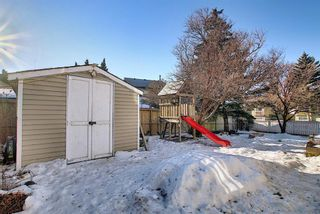 Photo 33: 211 Doverglen Crescent SE in Calgary: Dover Detached for sale : MLS®# A1060305