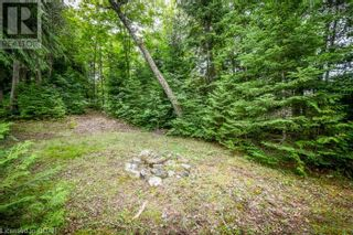 Photo 20: 0 MARKS POINT Road in Bancroft: Vacant Land for sale : MLS®# 40141117