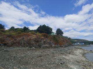 Photo 75: 669 Kerr Dr in : Du East Duncan House for sale (Duncan)  : MLS®# 884282